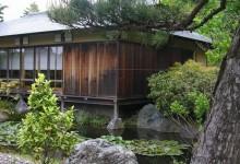 Ландшафтный дизайн. Сад в китайском стиле