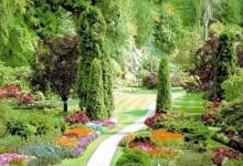 Красивый уютный сад