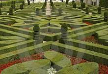 Французкий сад