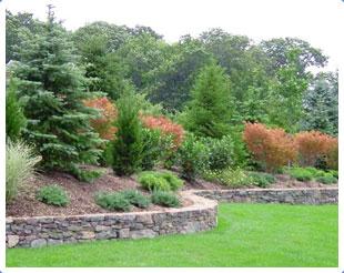 пейзажный стиль сада