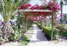 Мавртинаский стиль сада