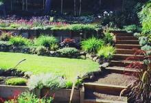 Какой выбрать газон, если участок неровный, с перепадом высот
