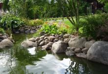 Фото декоративного водоема