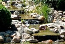Примеры водоемов