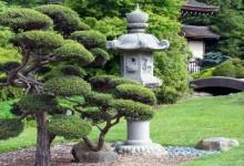 Японские сады, фото
