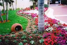 дизайн возле дома