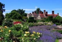 Английские сады