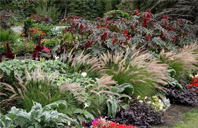 Идеи для сада.Садовые композиции Фотогалерея Ландшафтный дизайн и декоративное