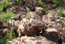 Камни валуны в ландшафте