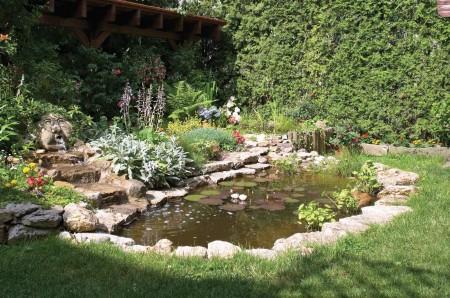 Колоритный пруд в саду