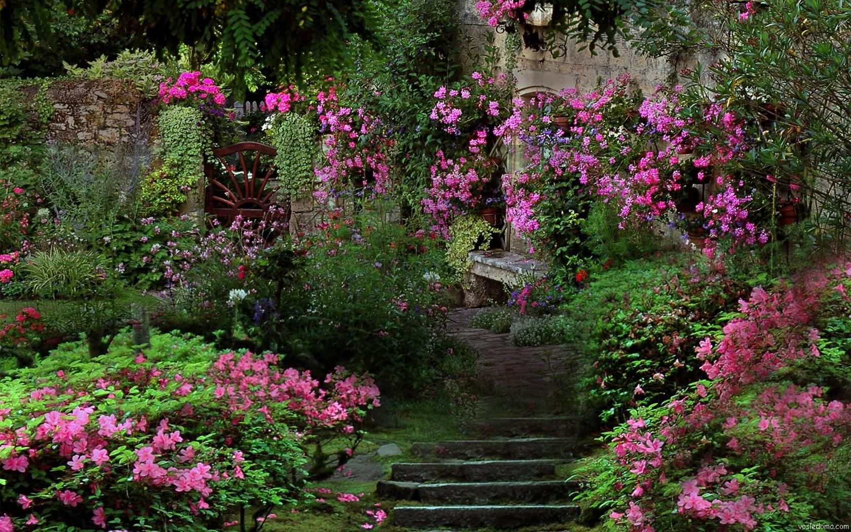 Фото садов с цветами и деревьями