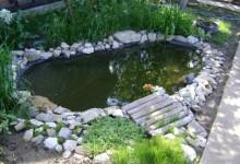 пруд на участке