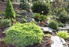 28-alpine-garden