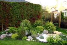 30-alpine-garden