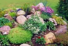 33-alpine-garden