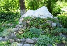 37-alpine-garden