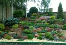 39-alpine-garden