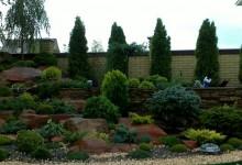 40-alpine-garden