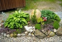 41-alpine-garden