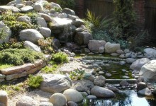 42-alpine-garden