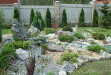 46-alpine-garden