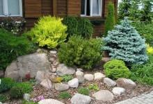 5-alpine-garden