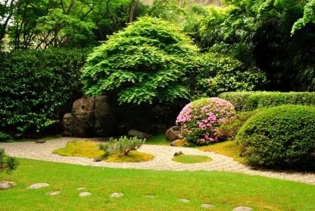 Гравий в саду
