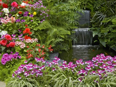 Фэн-шуй  в саду