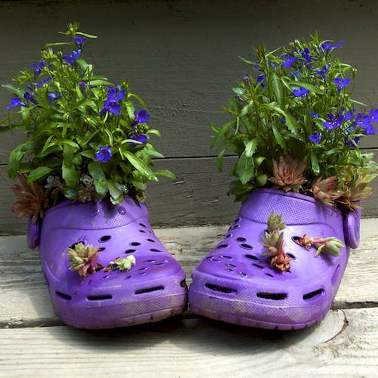 Ботинок клумба