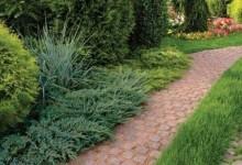 47-garden-path