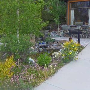 032-frontyard-pond