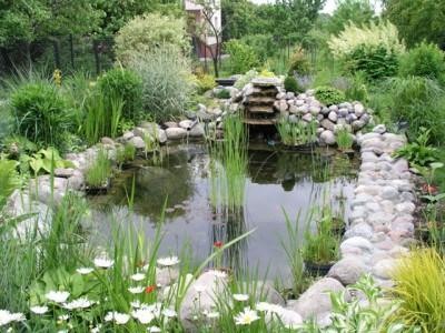 пример водоема в цветущем саду