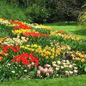 1-flowerbed