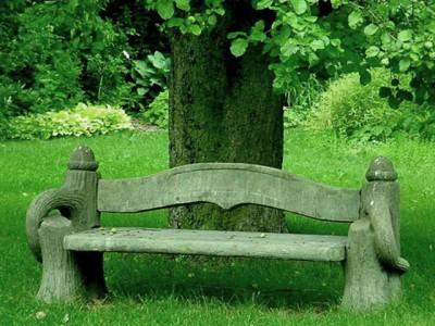 Уютная скамейка в тени сада