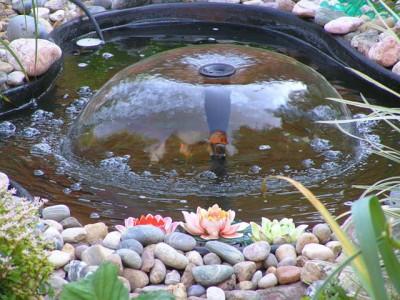 12-sadovuy-fontan-svoimi-rykami