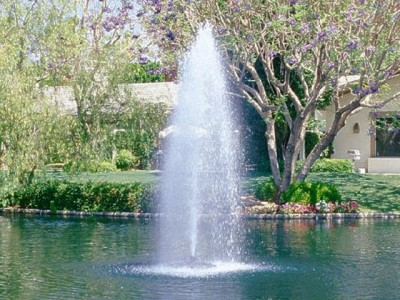 17-sadovuy-fontan-svoimi-rykami