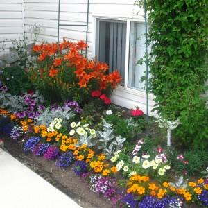 19-flowerbed