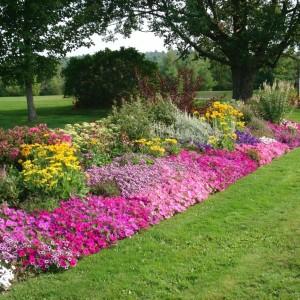 2-flowerbed