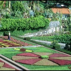 22-flowerbed
