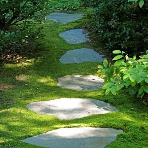 23-garden-path