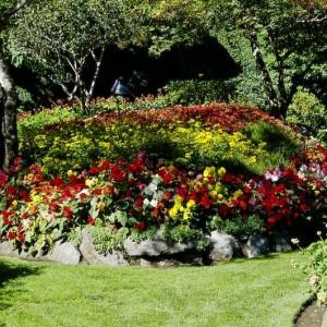 26-flowerbed