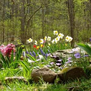 28-flowerbed