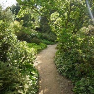 28-garden-path