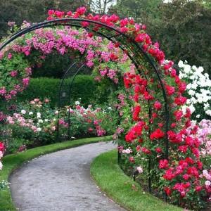 3-garden-path