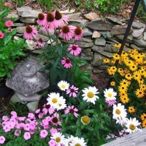 30-flowerbed