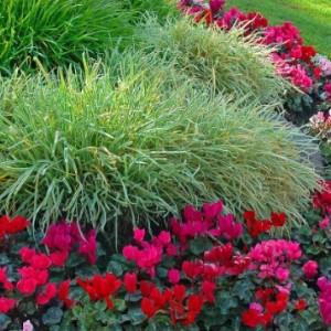 32-flowerbed