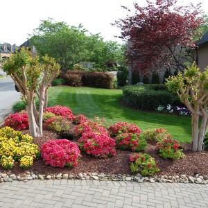 37-flowerbed