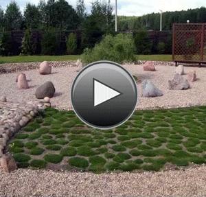 18 шагов к саду мечты