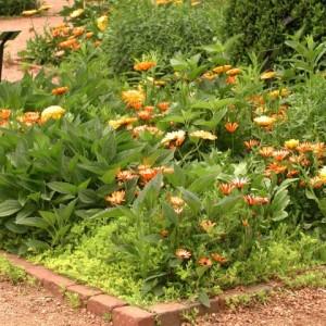 4-flowerbed