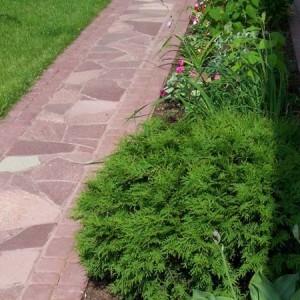40-garden-path